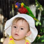 San Diego Safari Park Toddler Tips & More