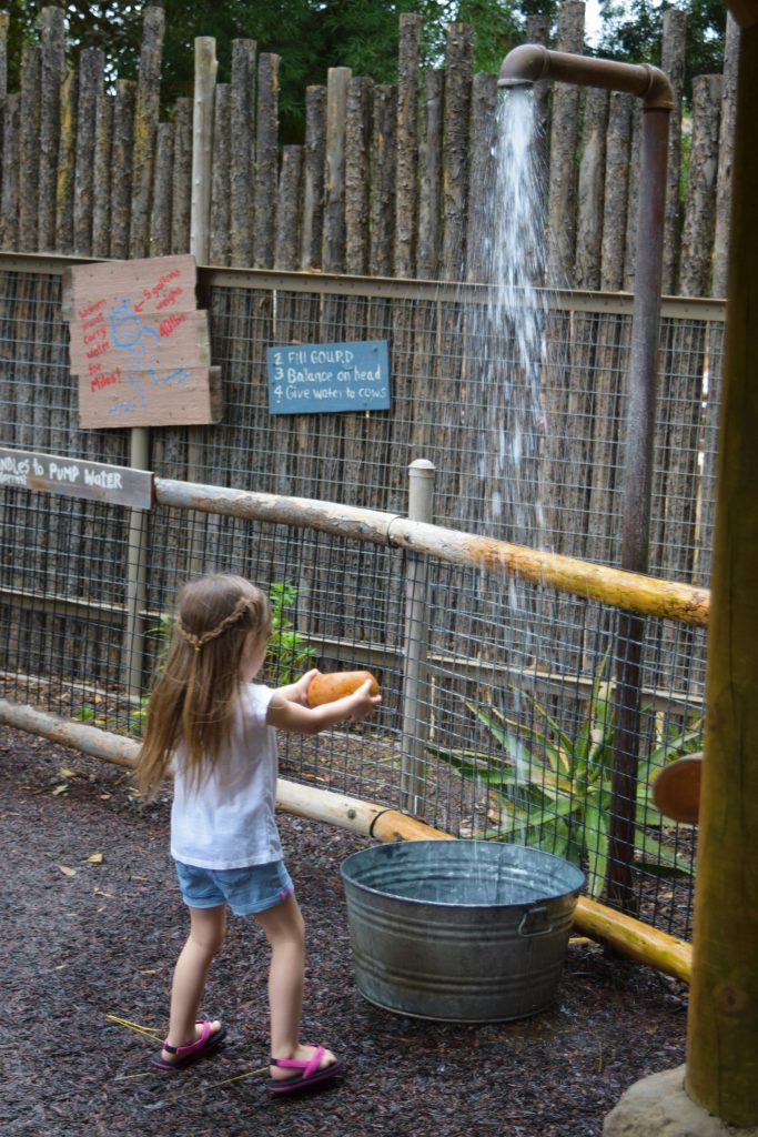 San Diego Safari Park - San Diego - Safari Park