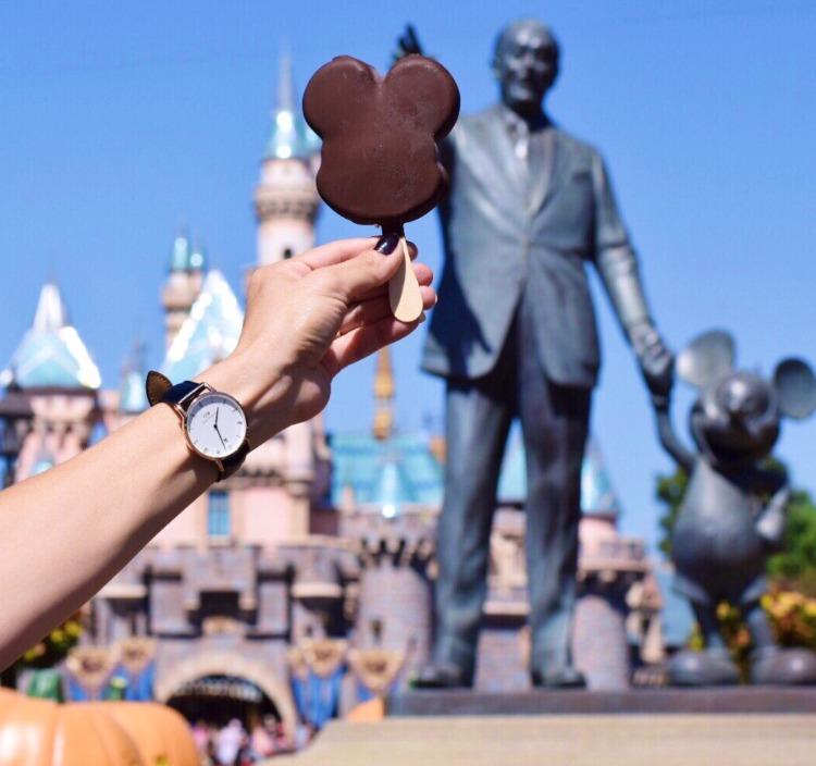 Tips-to-save-money-at-Disneyland-Daniel-Wellington-Watch-Disneyland-Walt Disney-Mickey Mouse-castle