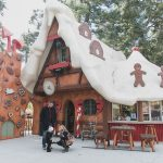 Top 7 Reasons To Visit SkyPark At Santa's Village
