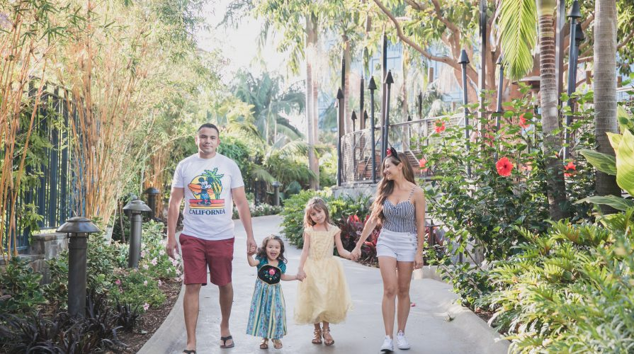 Disneyland Hotel-Amex-The_Mother_Overload_Lily_Ro_Photography-Travel Rewards-Family Vacation-Kid Birthday