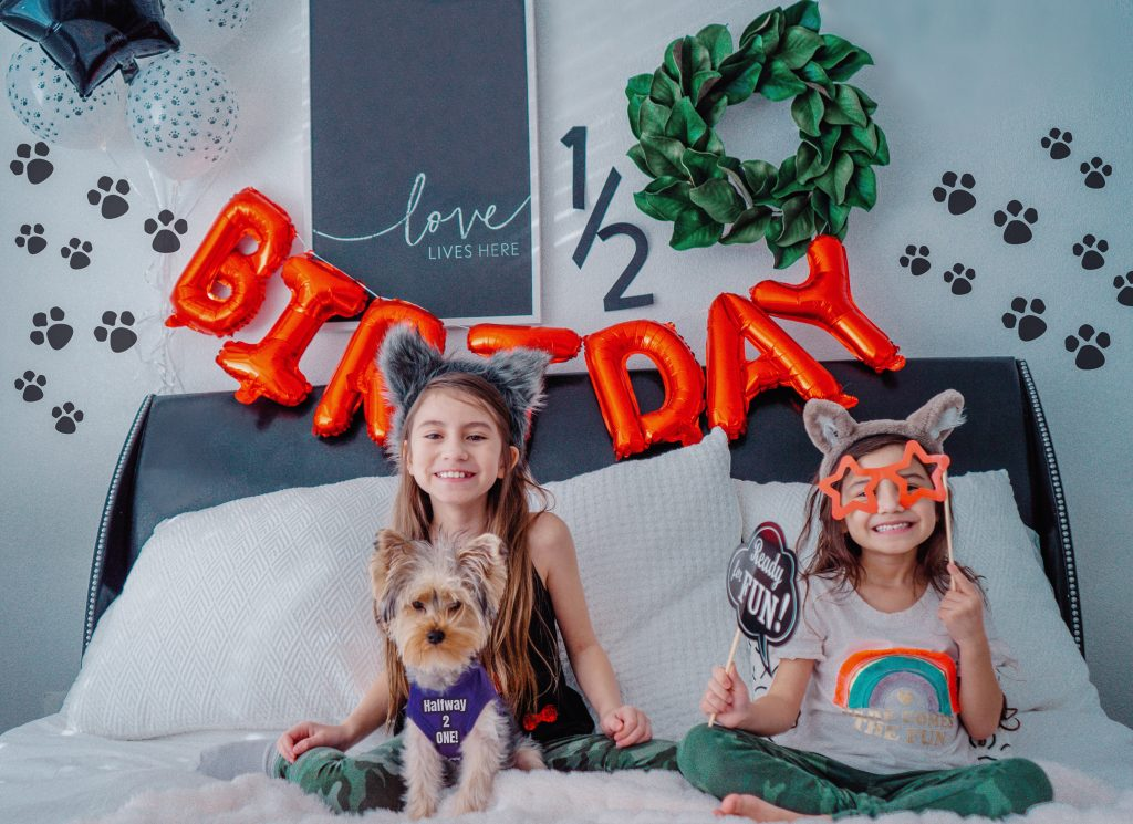 Dog birthday-puppy half birthday-1/2 birthday-yorkie