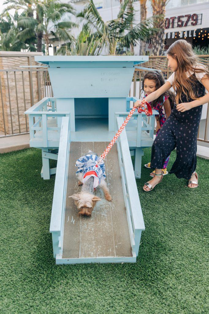 Paséa Hotel-Best dog friendly hotel US-family vacation-staycation-Huntington Beach California-family photography